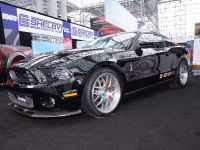 Shelby 1000 New York 2013