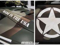 SS Customs Tesla Model S TeslaVets Project
