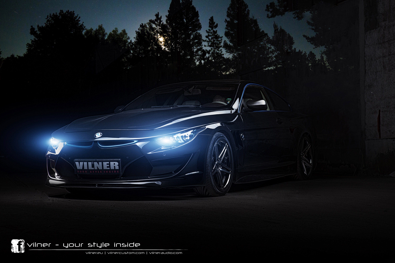vilner - фотография №8