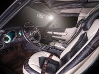 Vilner Chevrolet Corvette Stingray C3