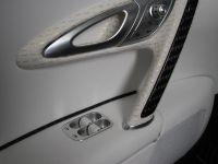 Linea Vincero Bugatti Veyron 16.4