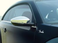Volkswagen Beetle Fender Edition